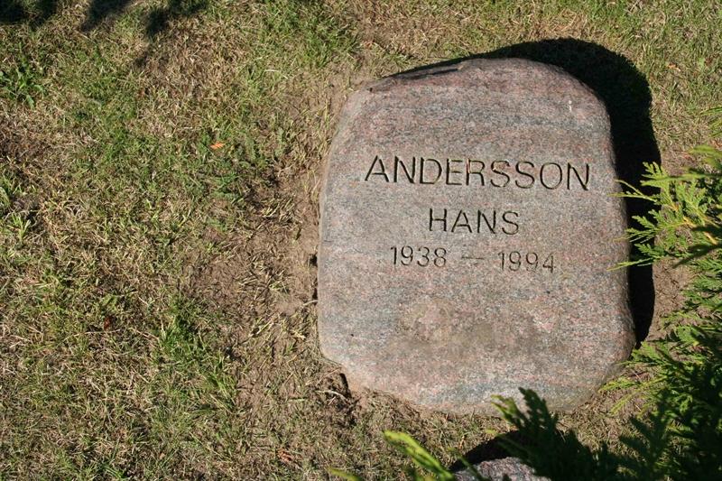 Grave number: NY J   245